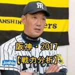 阪神2017の強い理由は?若手選手の成長?投手と野手を分析!