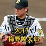 梅野隆太郎の盗塁阻止率2017が凄い!リードやキャッチングに打撃はどう?