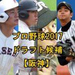 プロ野球2017ドラフト予想【阪神編】注目の候補選手をまとめてみた!