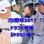プロ野球2017ドラフト予想【ヤクルト編】候補選手をまとめてみた!