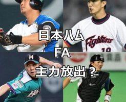 日本ハム・FA