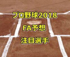 プロ野球2018FA予想