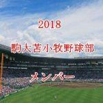 駒大苫小牧野球部2018のメンバー紹介!出身中学と注目選手に監督も
