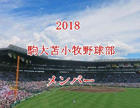 駒大苫小牧野球部メンバー2018