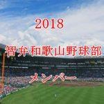 智弁和歌山野球部2018のメンバー紹介!出身中学と注目選手に監督も