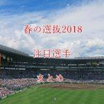 高校野球春の選抜2018!注目選手(投手・野手)をまとめてみた!