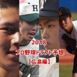広島カープドラフト予想2018!指名されそうな候補選手一覧