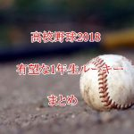 高校野球2018!スーパー1年生・ルーキーの注目選手まとめ!