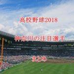 高校野球2018注目選手【神奈川編】ドラフト評価のまとめ