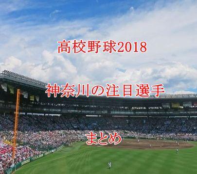 高校野球2018・神奈川の注目選手