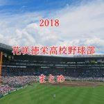 花咲徳栄高校野球部メンバーの出身中学と注目選手のまとめ【2018年版】
