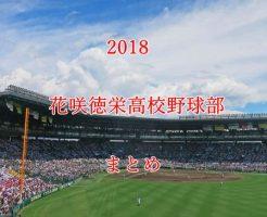 花咲徳栄高校野球部メンバー2018