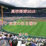高校野球2018注目選手【東京編】ドラフト評価のまとめ