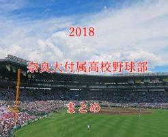 奈良大付属野球部メンバー2018