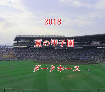 夏の甲子園2018・ダークホース
