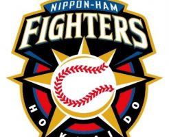 プロ野球戦力外・引退予想2018-2019・日本ハム