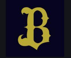 プロ野球契約更改・年俸予想2020・オリックス