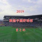 桐蔭学園野球部メンバーと注目選手【最新センバツ2019年版】