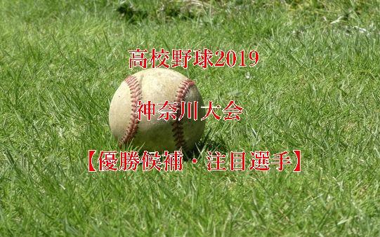 高校野球夏予選2019・神奈川