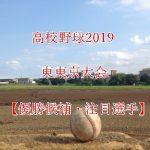 高校野球夏予選2019!東東京大会の強豪(優勝候補)と注目選手