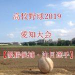 高校野球夏予選2019!愛知大会の強豪(優勝候補)と注目選手
