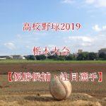 高校野球夏予選2019!栃木県大会の強豪(優勝候補)と注目選手