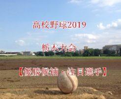 高校野球夏予選2019・栃木